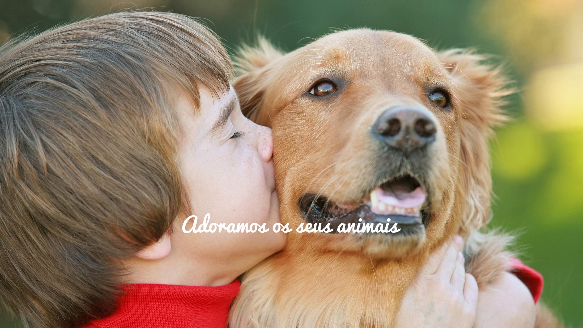 adoramos-seus-animais-05